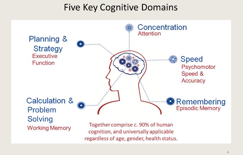 Los cinco dominios cognitivos